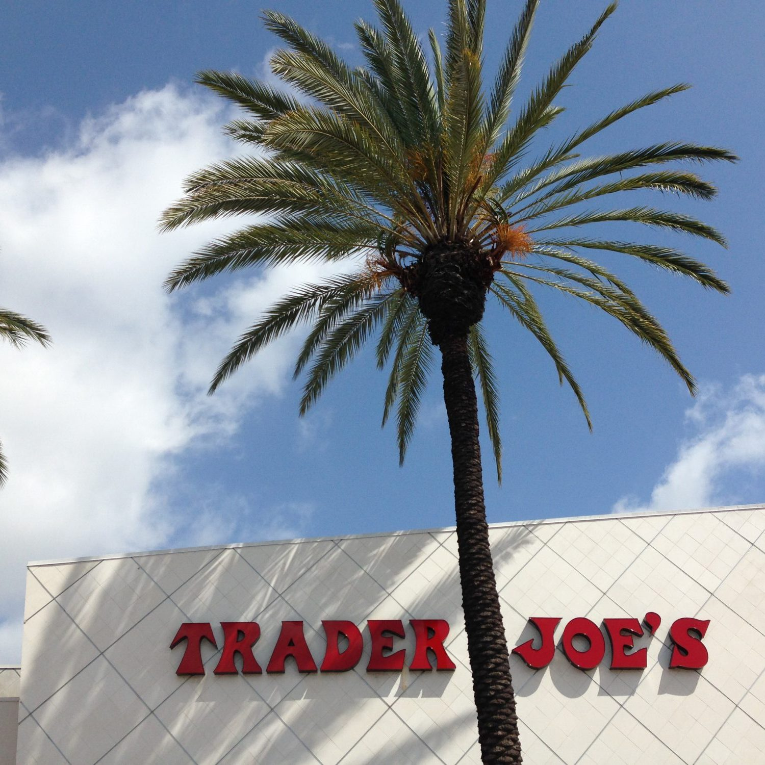 trader joes in orange county dietitian picks