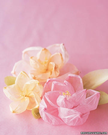 Shaped Crepe-Paper Flowers