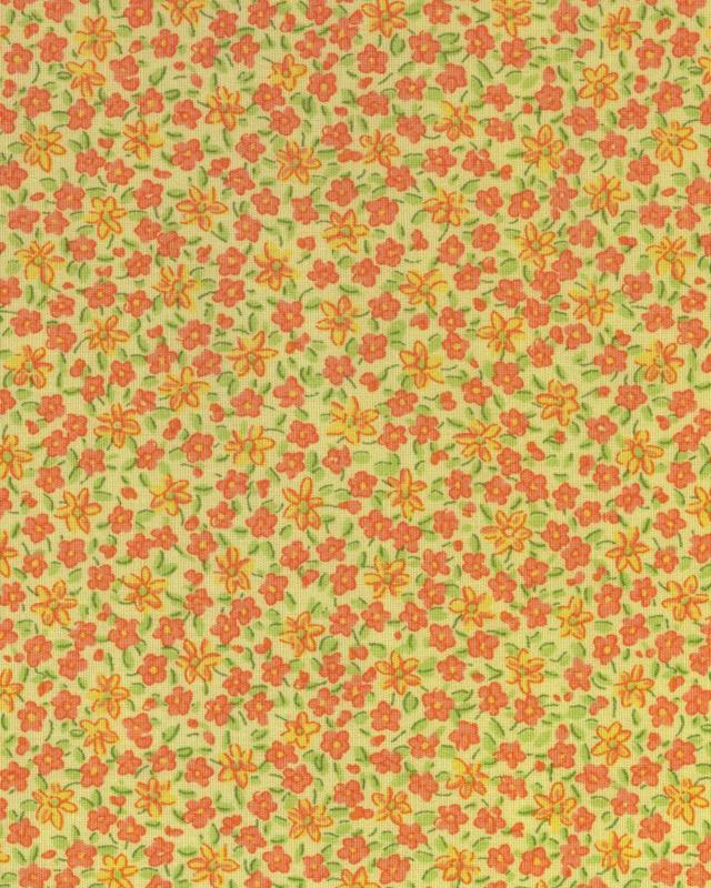 msw_win09_minigarden_orange.jpg