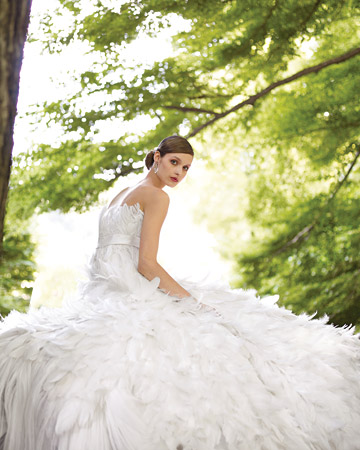 Organza and Feathered Gown