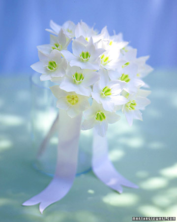 Bouquet with Eucharis Lilies