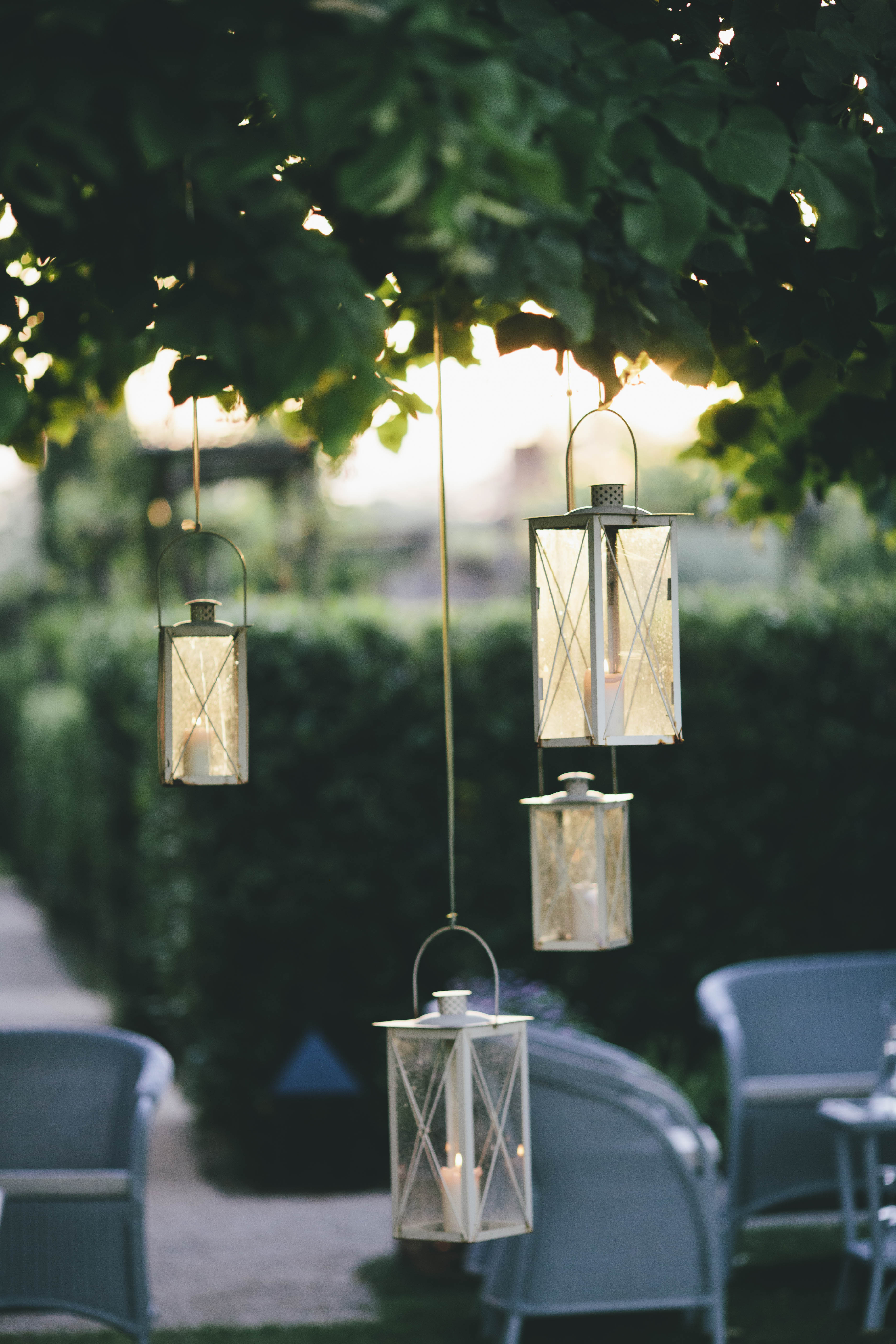 lanterns hanging from trees