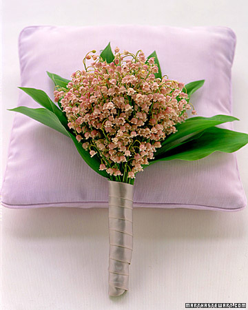 lavender_win99.jpg