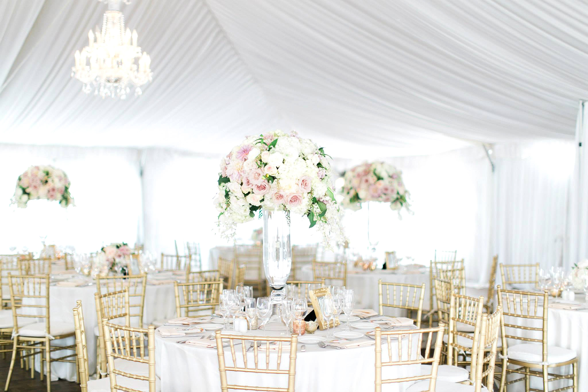 beautiful garden wedding reception tent, white tables with gold chairs and floral centerpieces