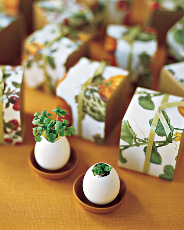 White Egg Favors