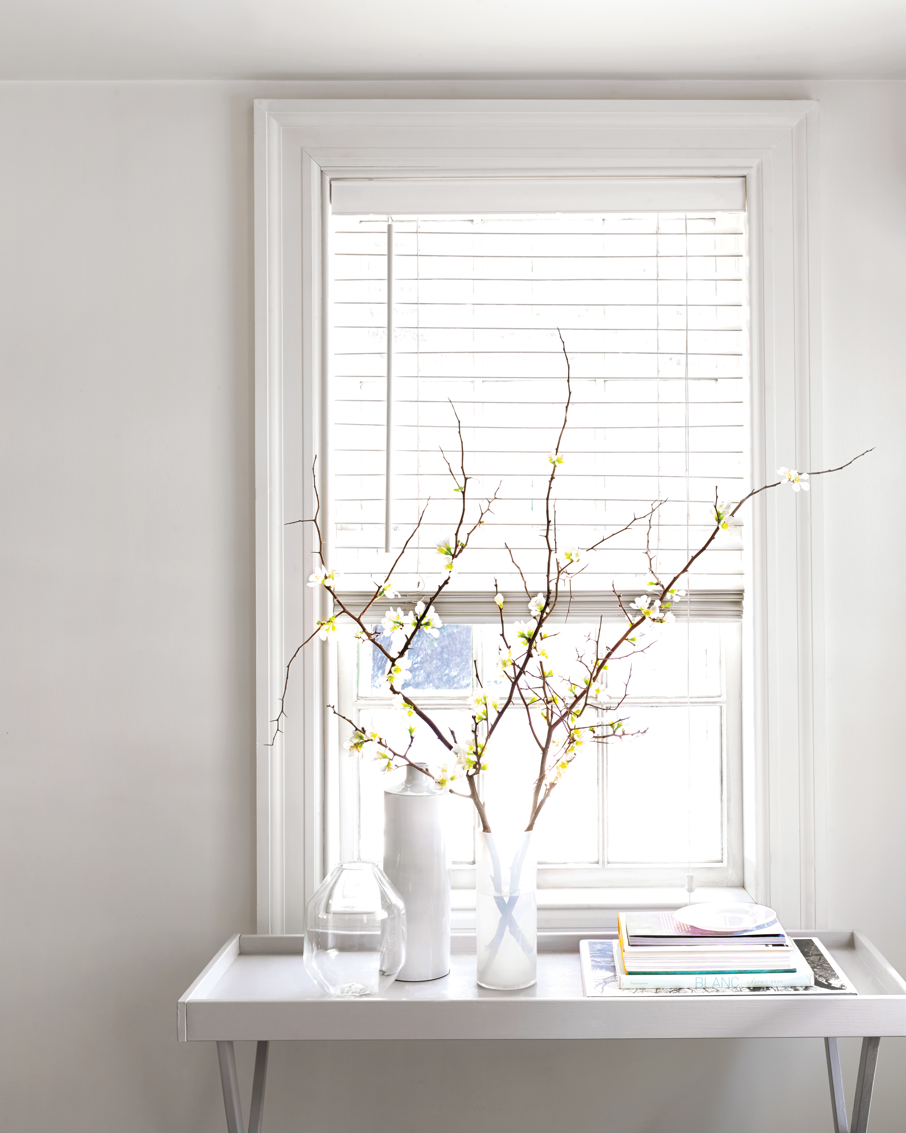 spring-cleaning-blinds-mld110961.jpg