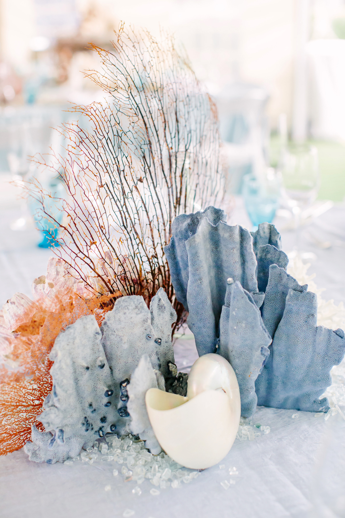 non-floral wedding centerpieces seashells and coral