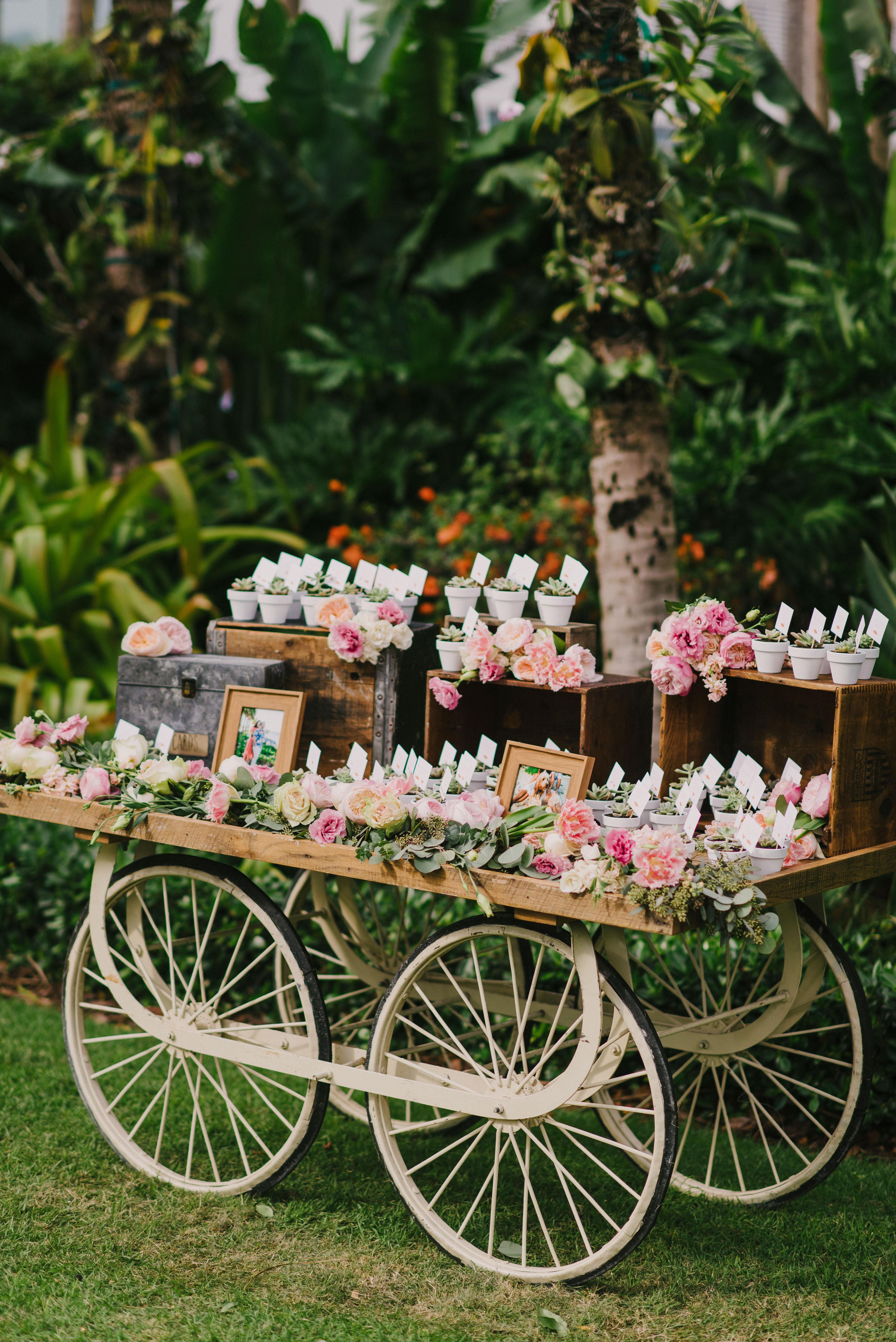 favor display cart
