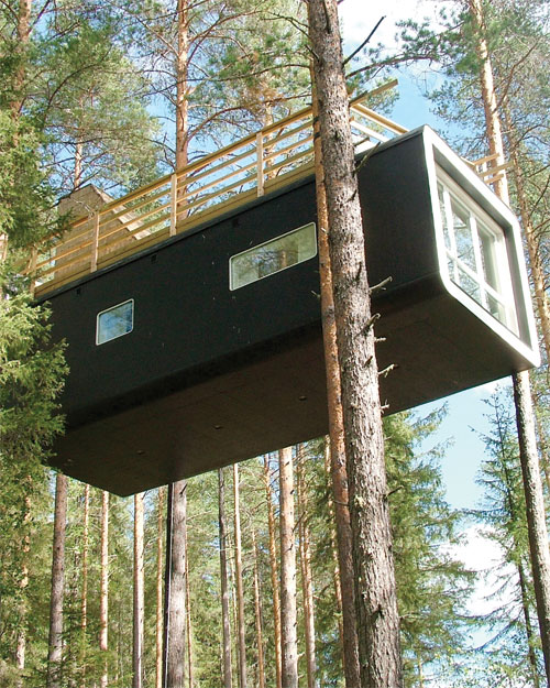 Stay in a Tree House: Sweden