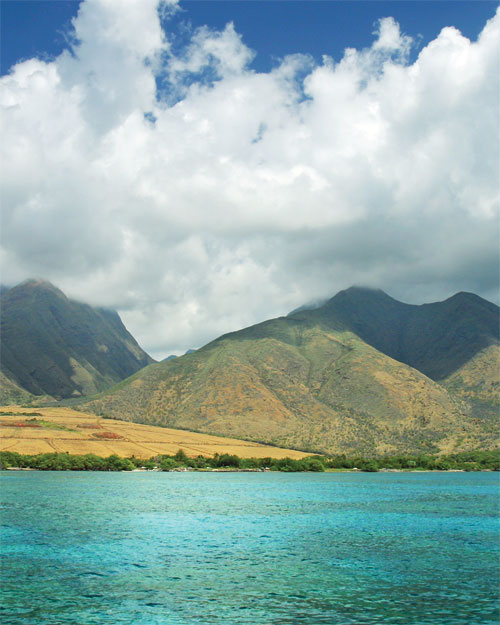 Embark on a Cruise: Hawaii