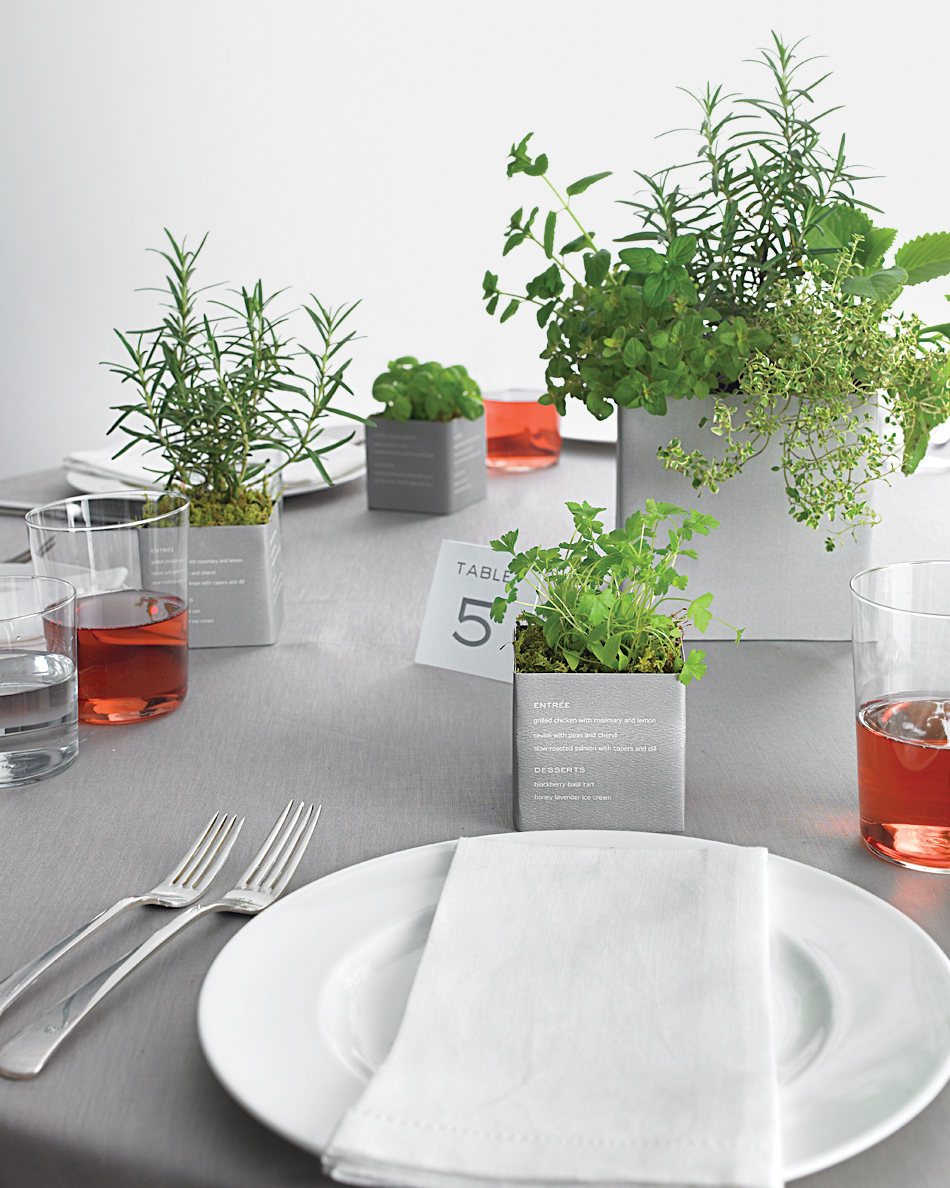 diy-floral-favors-planted-herb-pots-sp10-0615.jpg