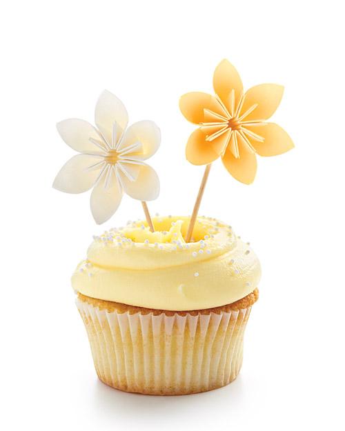 mwd105762_sum10_cupcake1.jpg