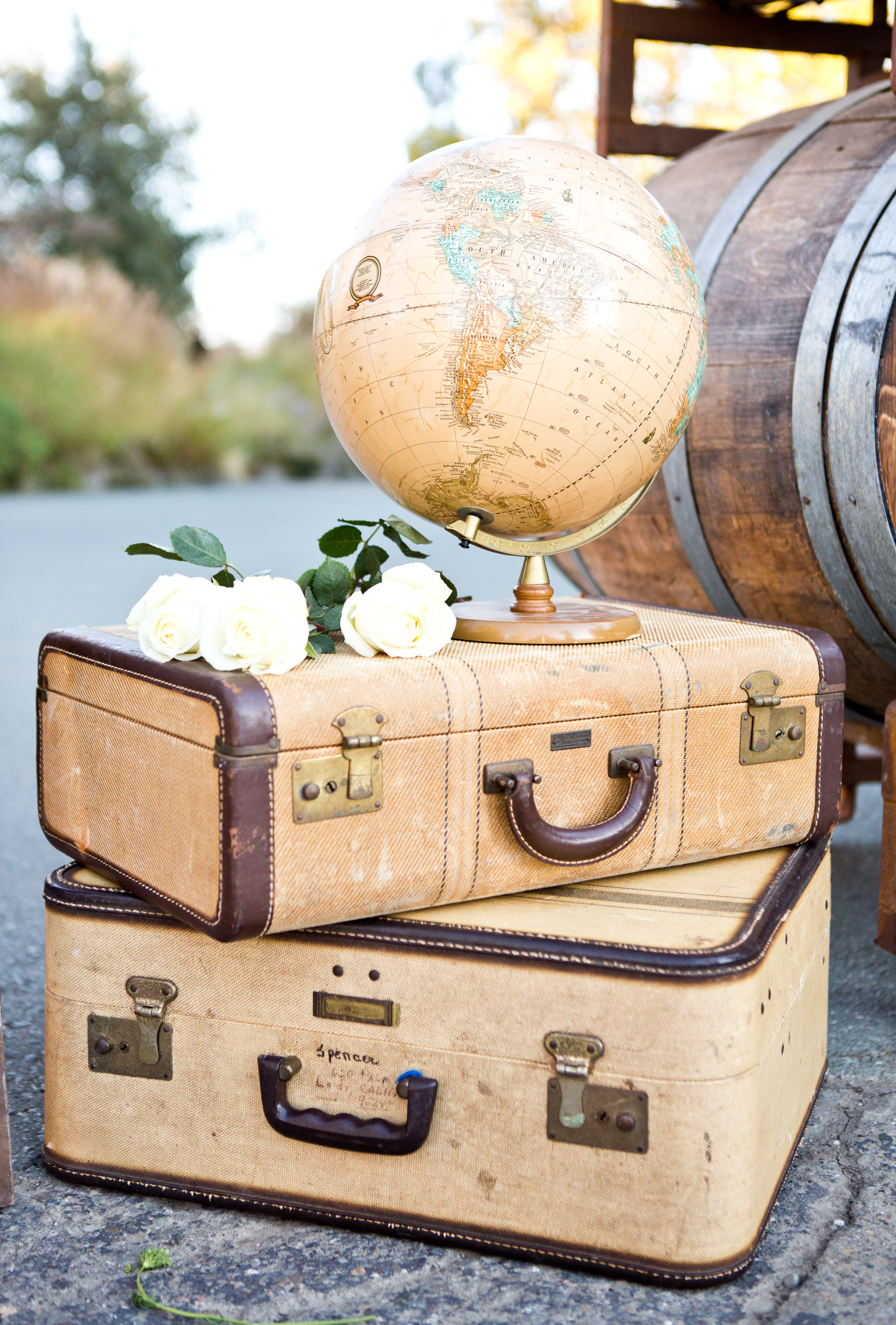 globe decor on suitcases