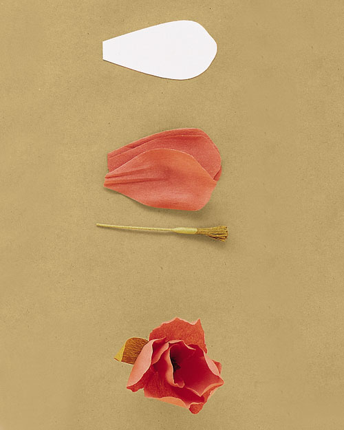 tulip-ht-spr01ml243ff2.jpg