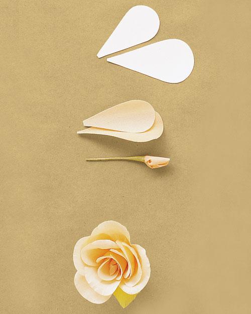 rose-ht-spr01ml243ff2.jpg