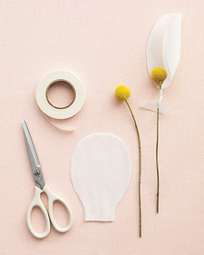 mwd104505_spr09_magnoliaht1_l.jpg