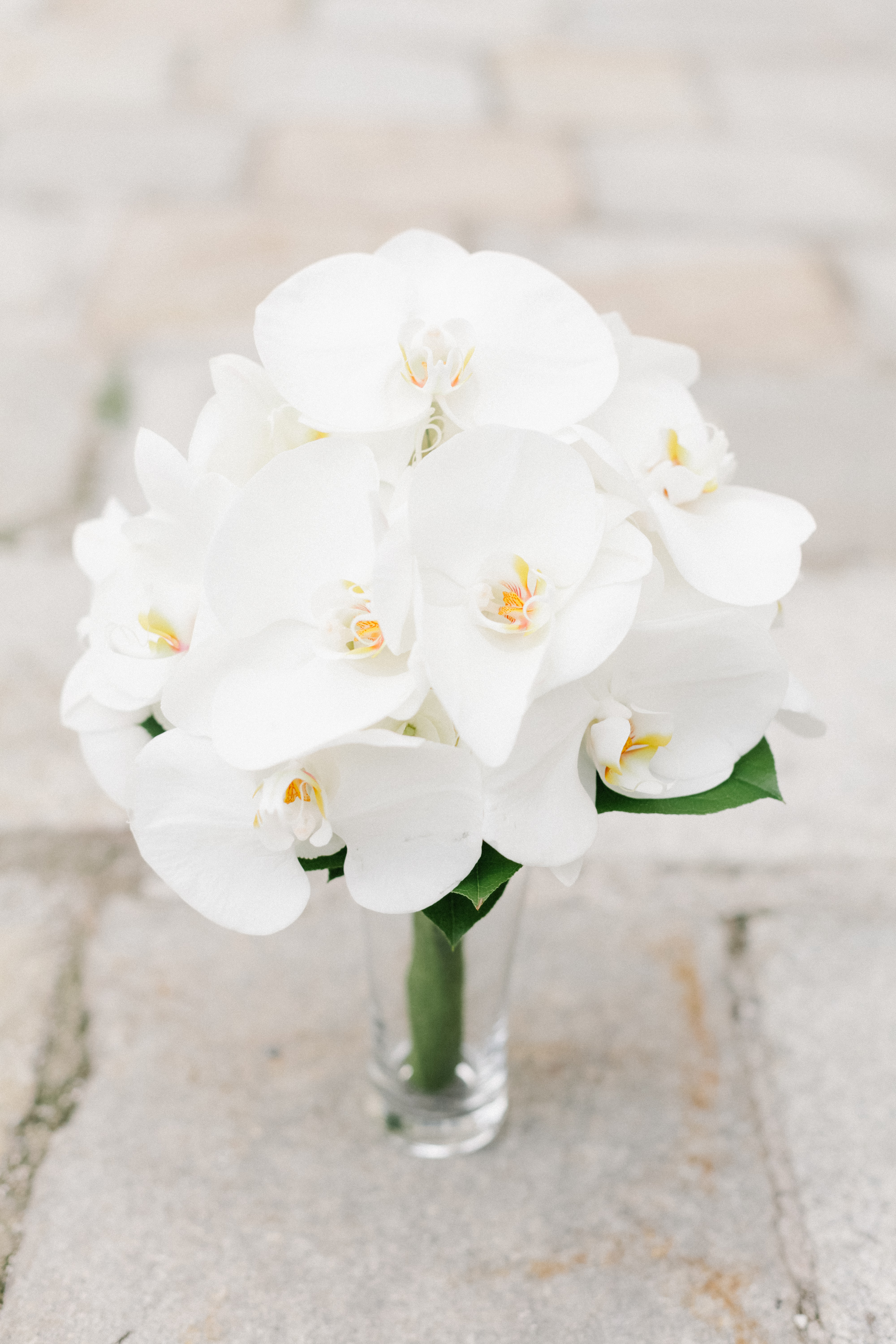 Simple and elegant all-white orchid wedding bouquet