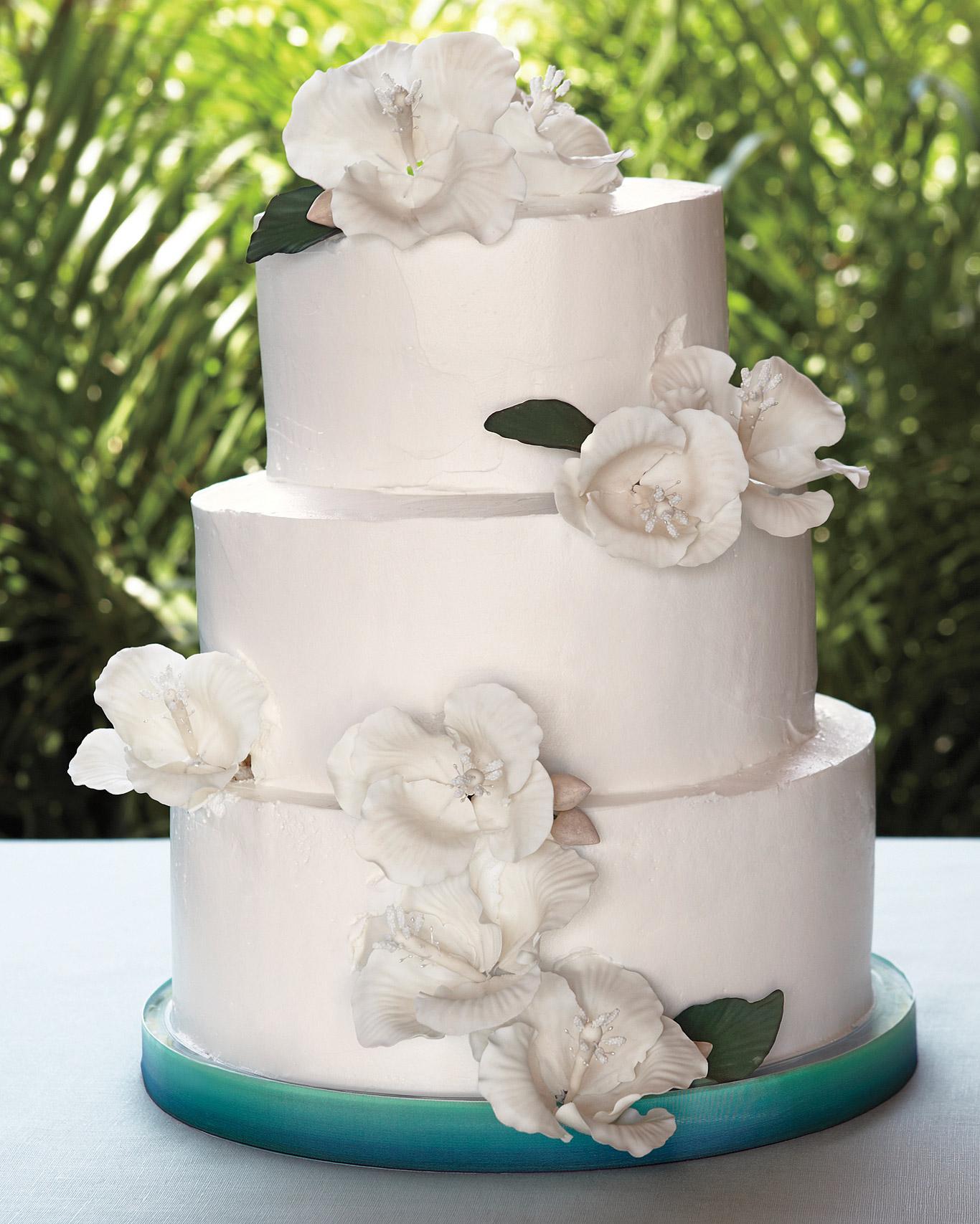 rw-mexico-cake-mwds107779.jpg