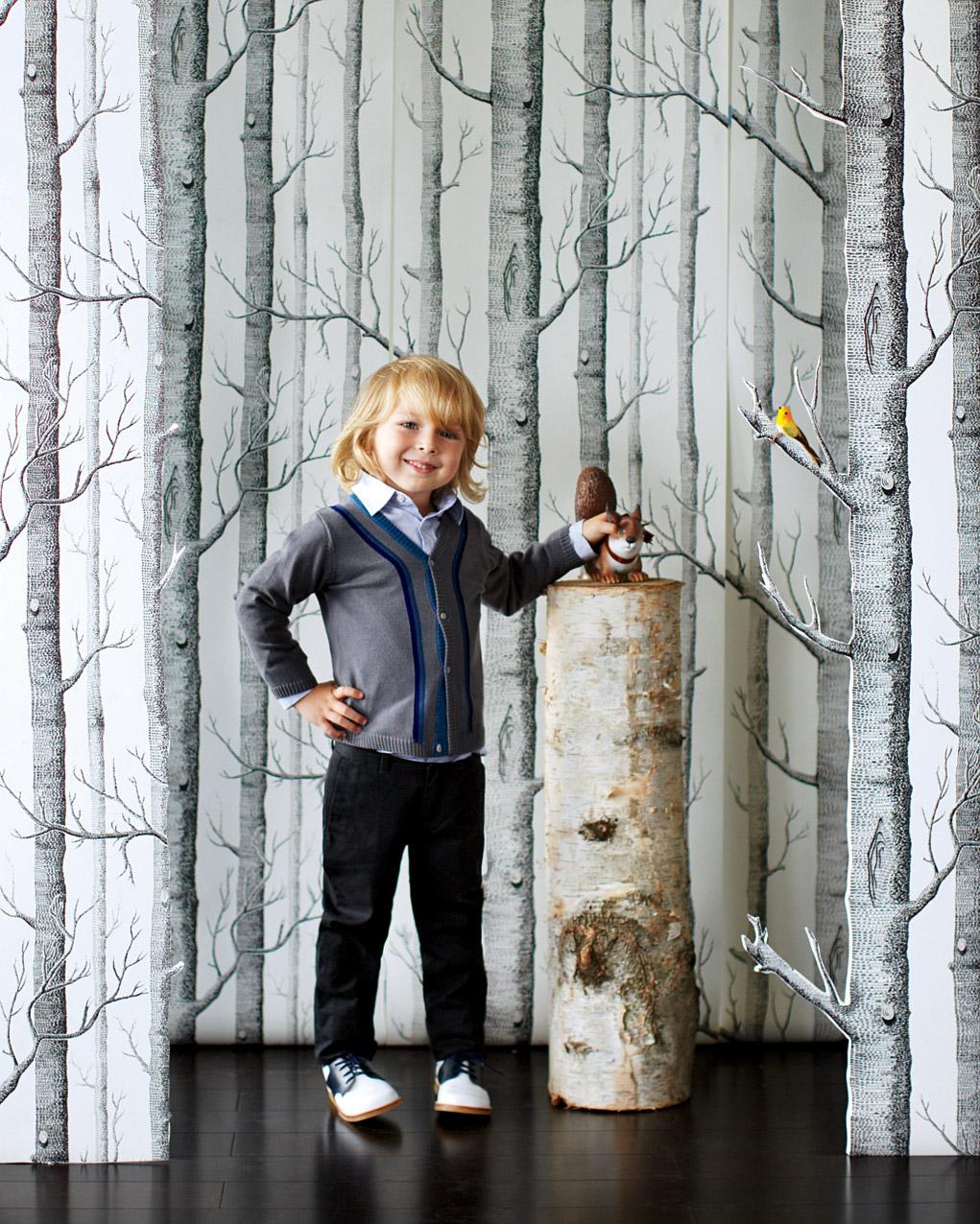 wallpaper-backdrop-3-mwd107819.jpg