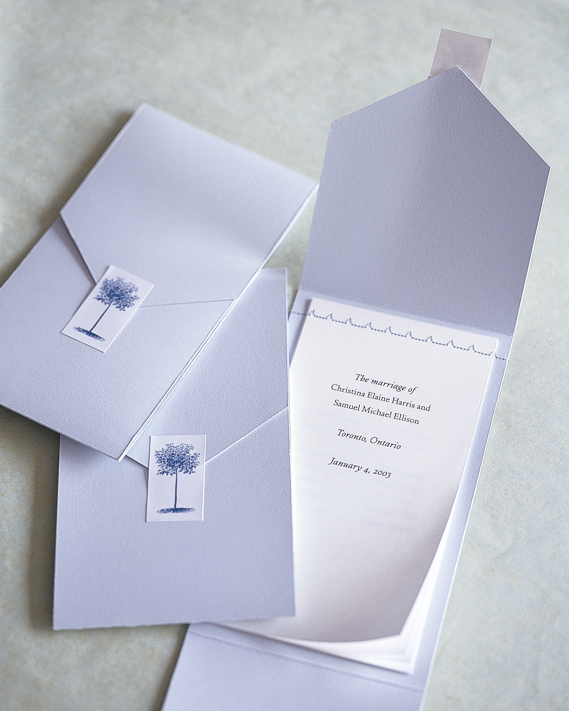 diy-wedding-ceremony-programs-ml083a06-0515.jpg