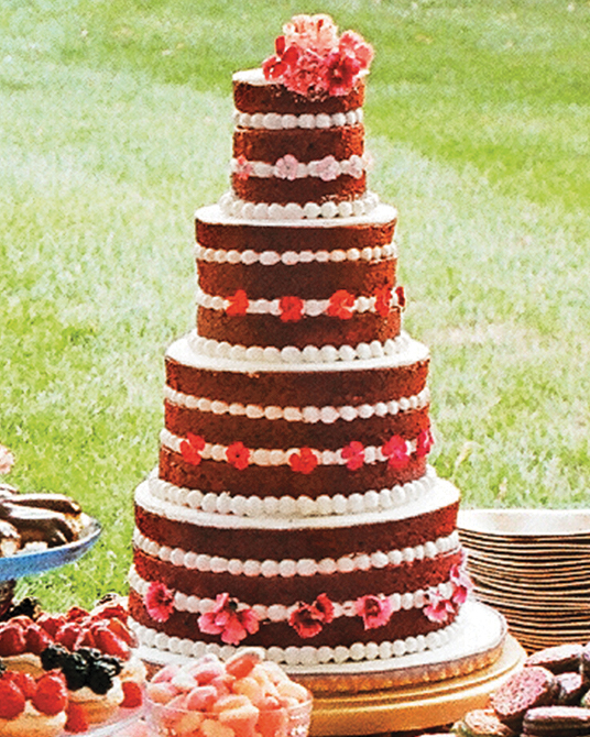 mfiona-peter-wedding-vermont-red-velvet-crop-d112512.jpg