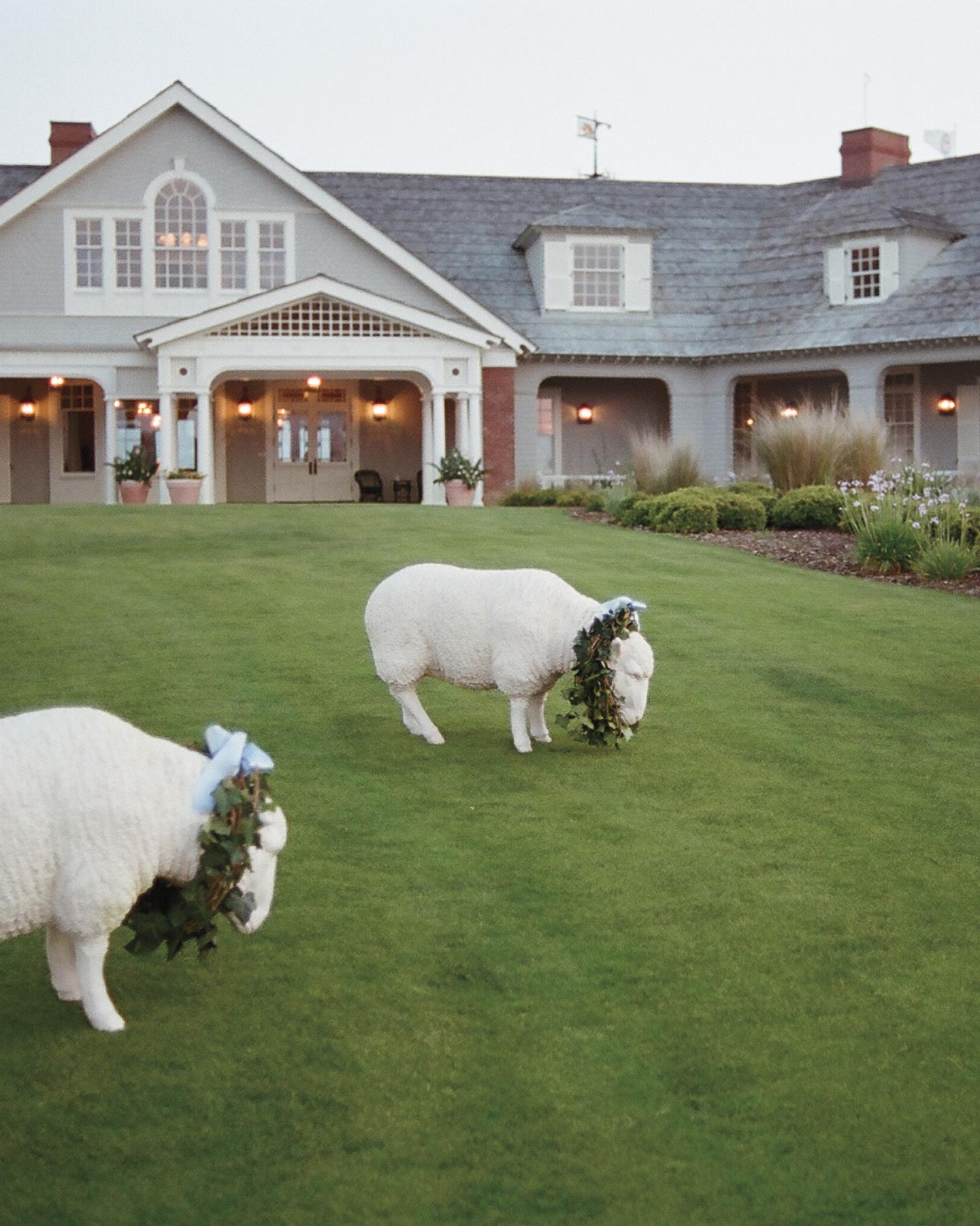 ceramic-sheep-mwds109983.jpg