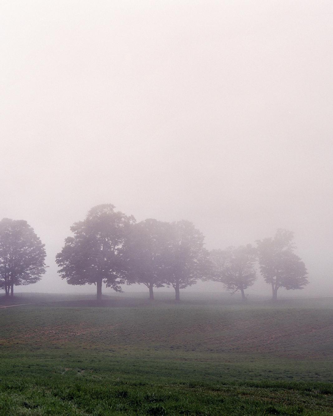 fog-wd107926.jpg