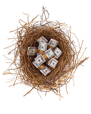 bundled money nest