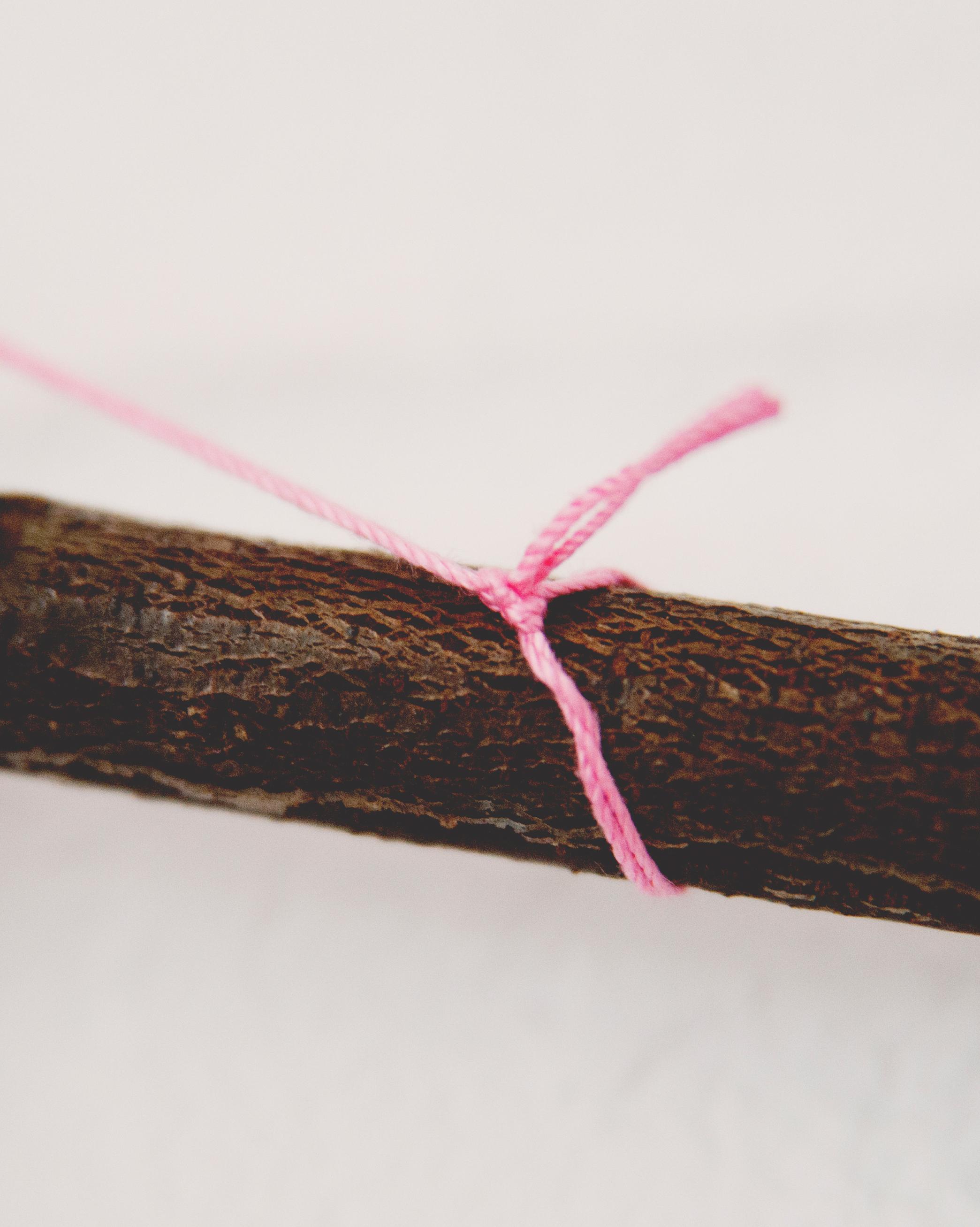 claire-thomas-bridal-shower-garden-diy-string-branch-0814.jpg
