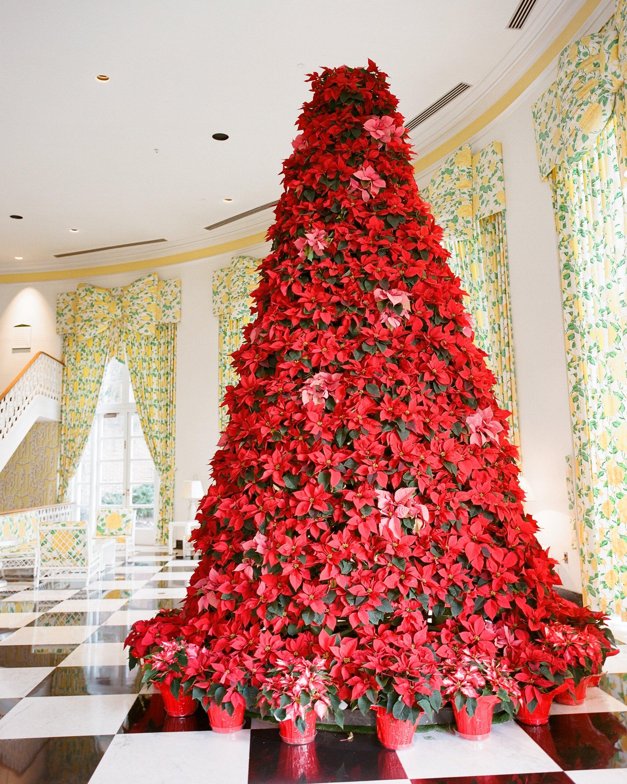 Christmas Wedding Ideas.29 Festive Ideas For A Christmas Wedding Martha Stewart