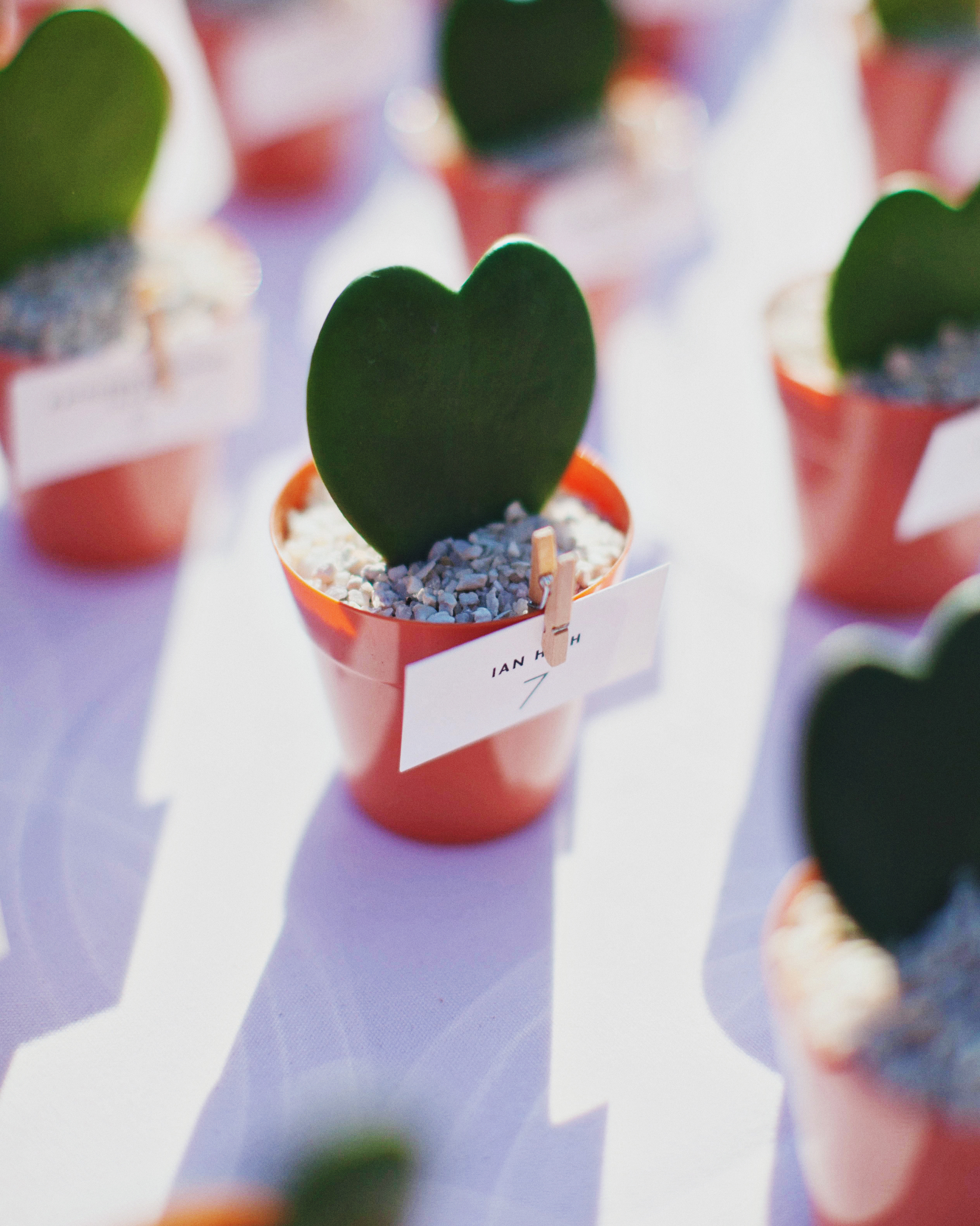 casey-ross-wedding-hoya-614-s111514-1114.jpg