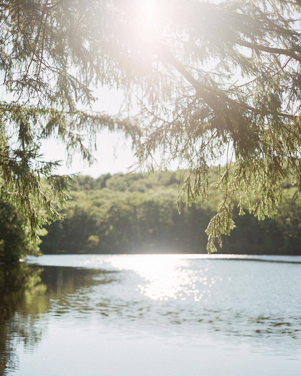 cedar-lakes-estate-heather-0004-0315.jpg