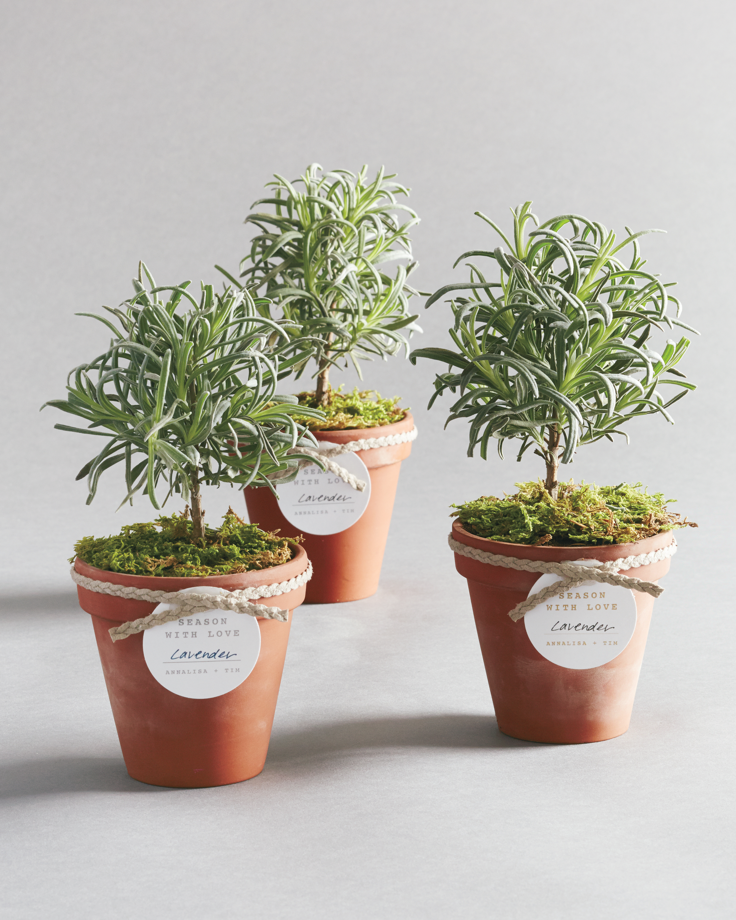 herb-favors-0095-d111519.jpg