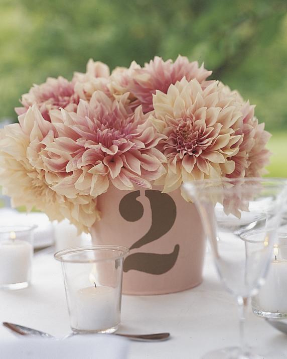 outdoor-wedding-decorations-ml774i04-0515.jpg