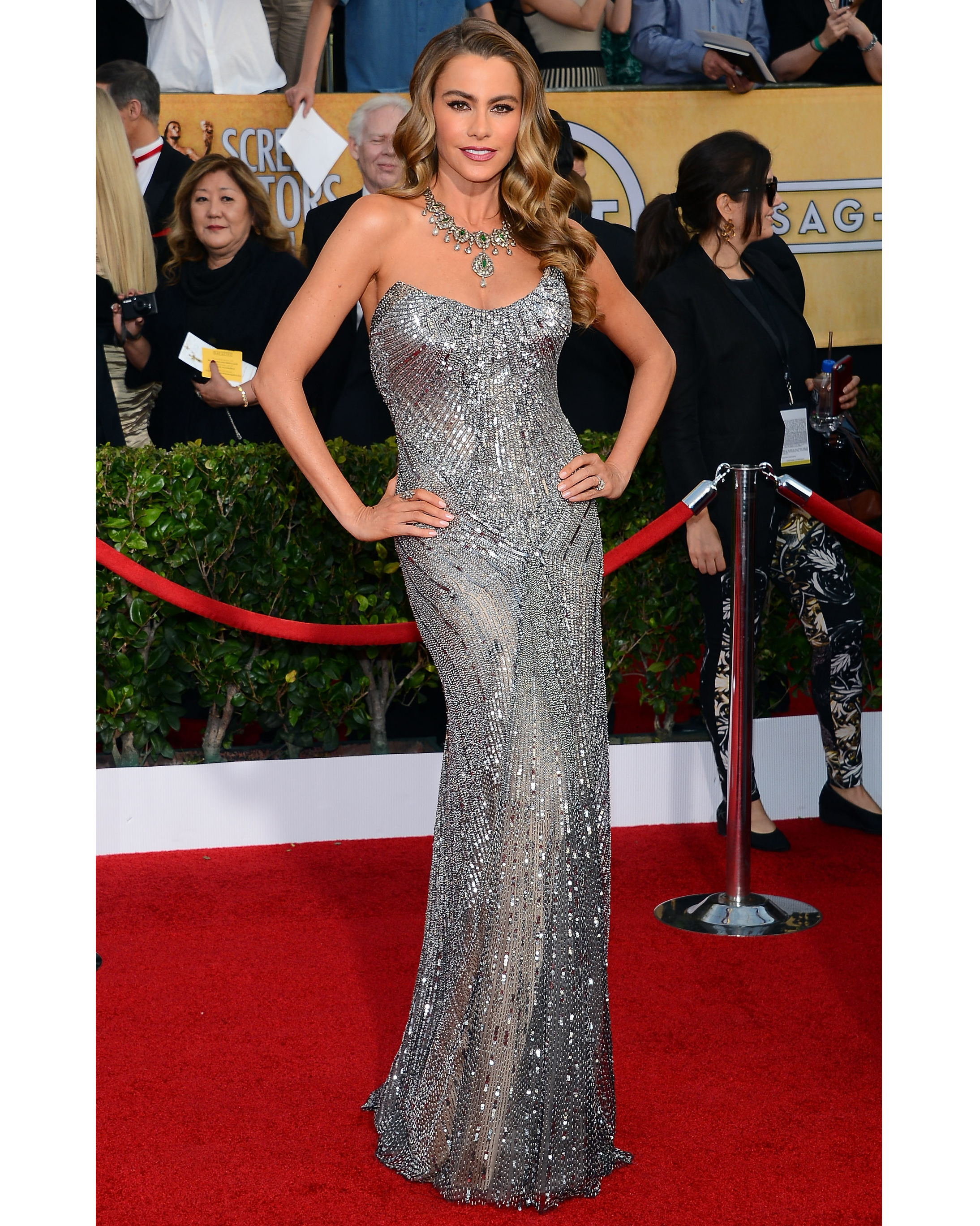 20th Annual Screen Actors Guild Awards