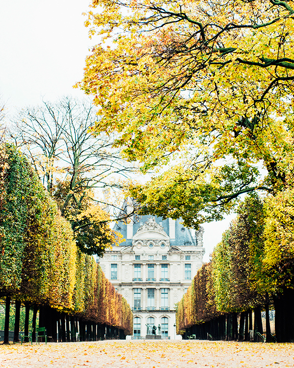 katie-mitchell-photography-where-to-propose-in-paris-jardin-des-tuileries-0815.jpg