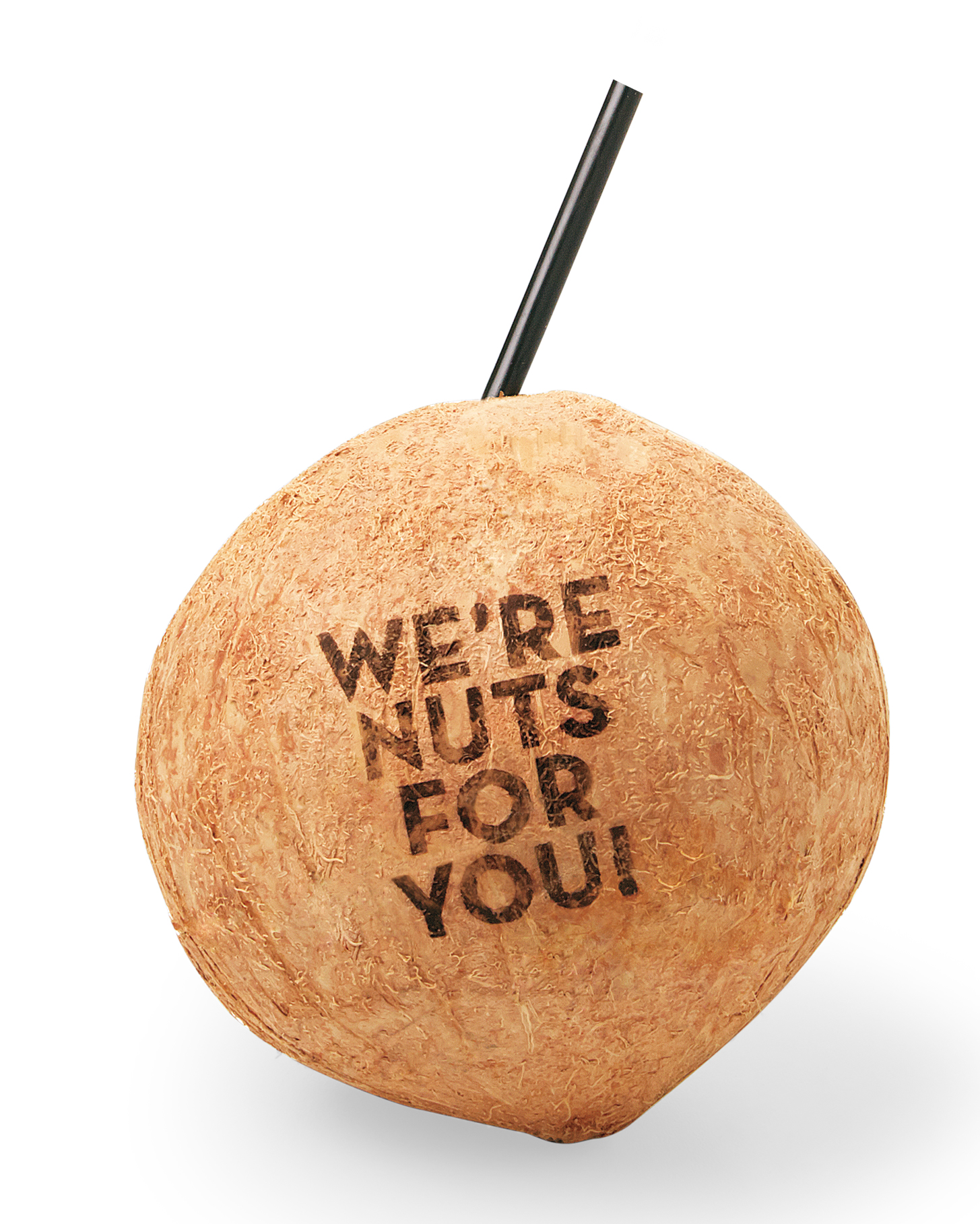 personalized-coconuts-0032-d112196.jpg