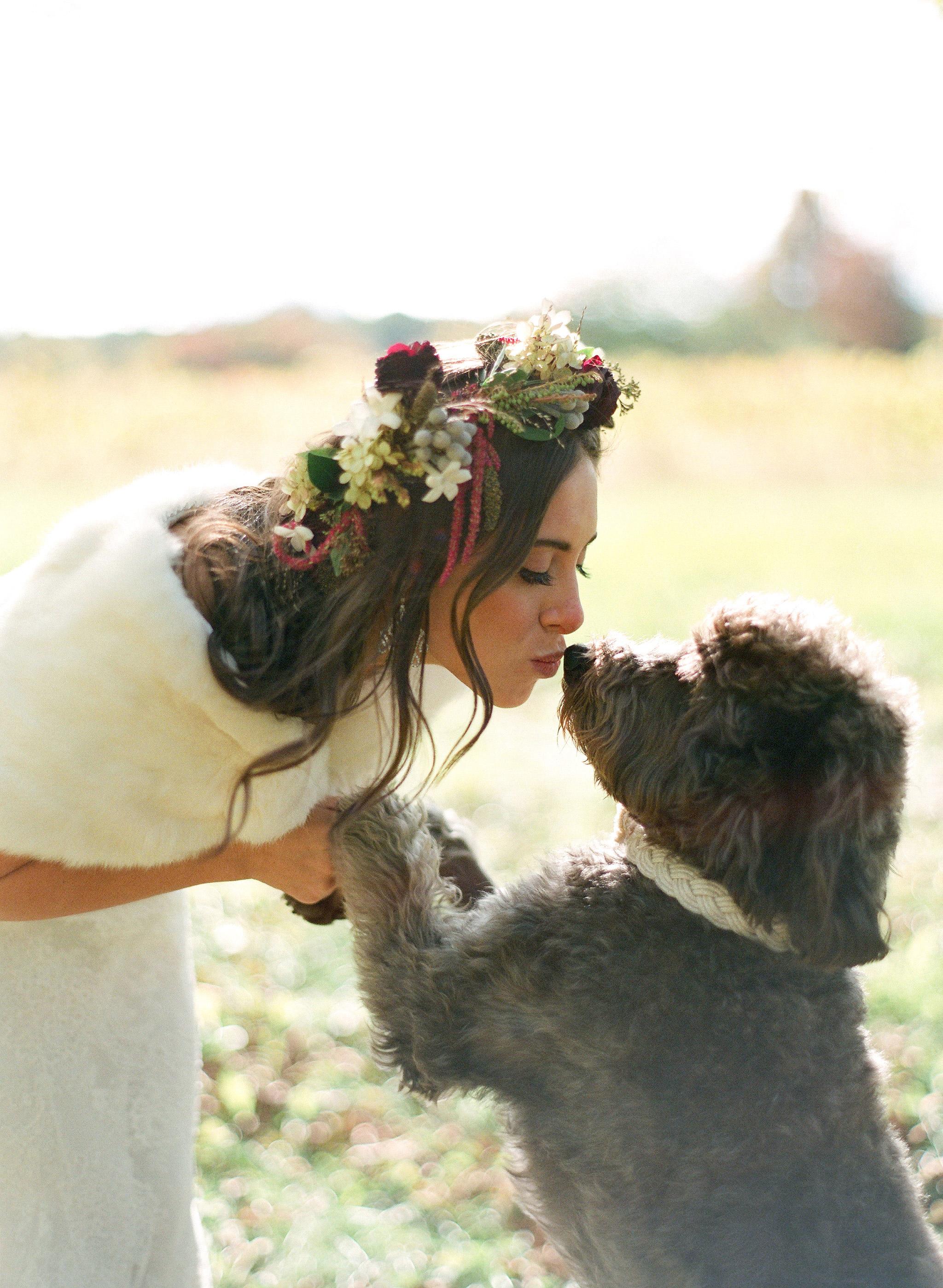 bride kissing dog
