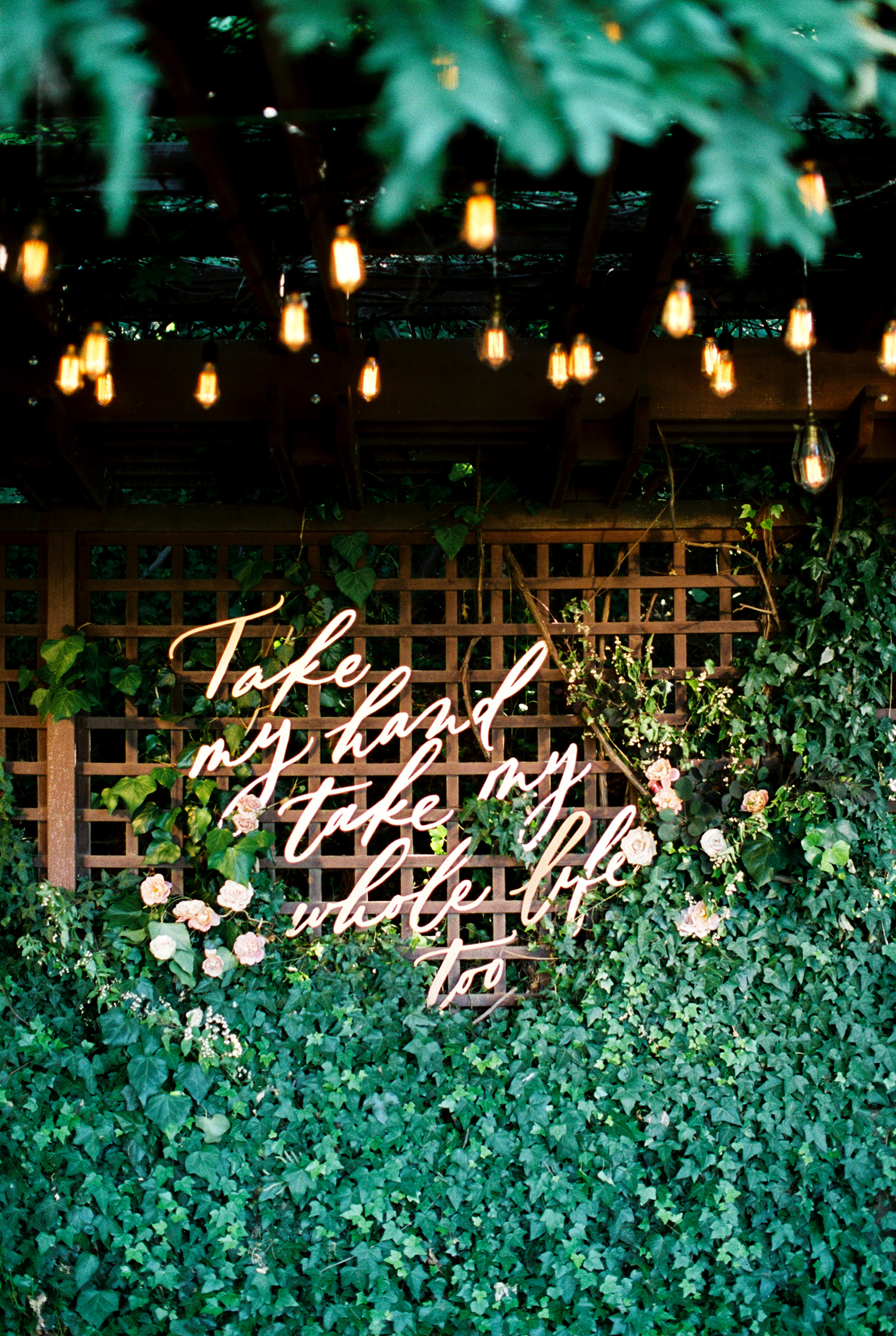 megan scott wedding quote display