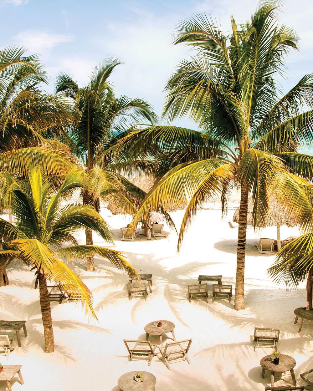 travel-new-places-beach-casa-las-tortugas-mexico.jpg