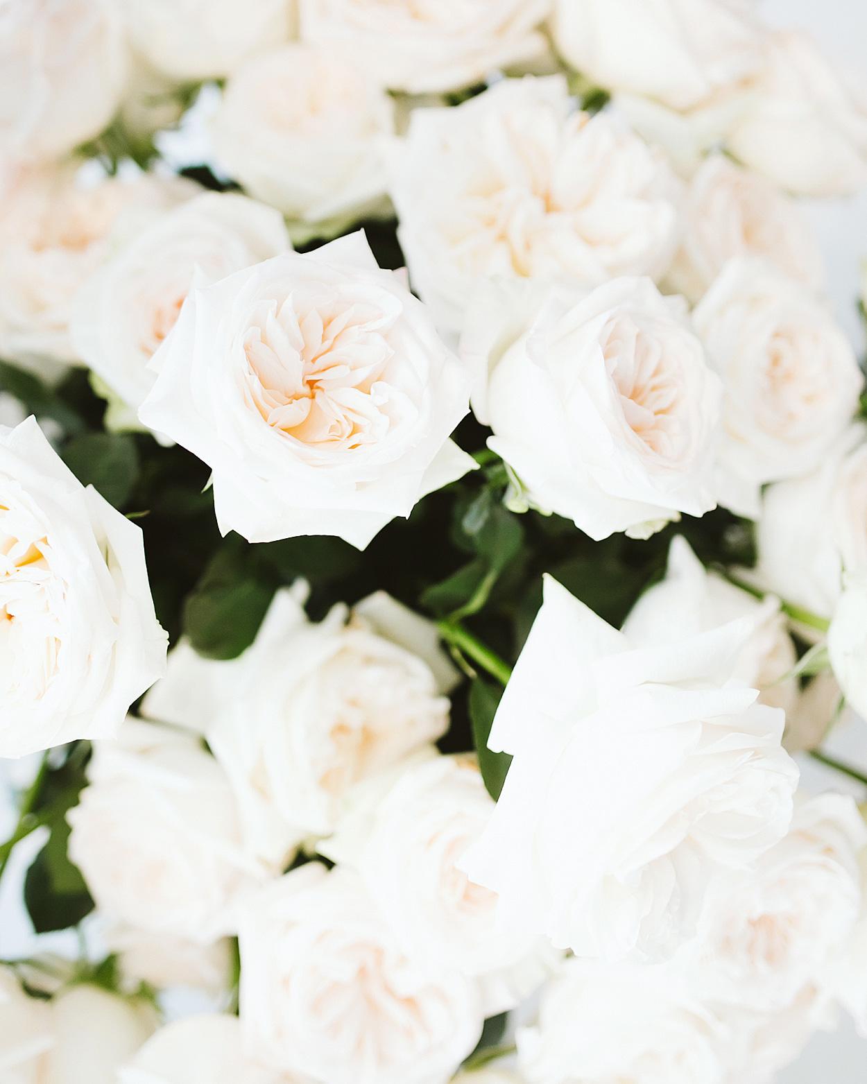 romantic-wedding-flowers-ohara-garden-rose-0516.jpg