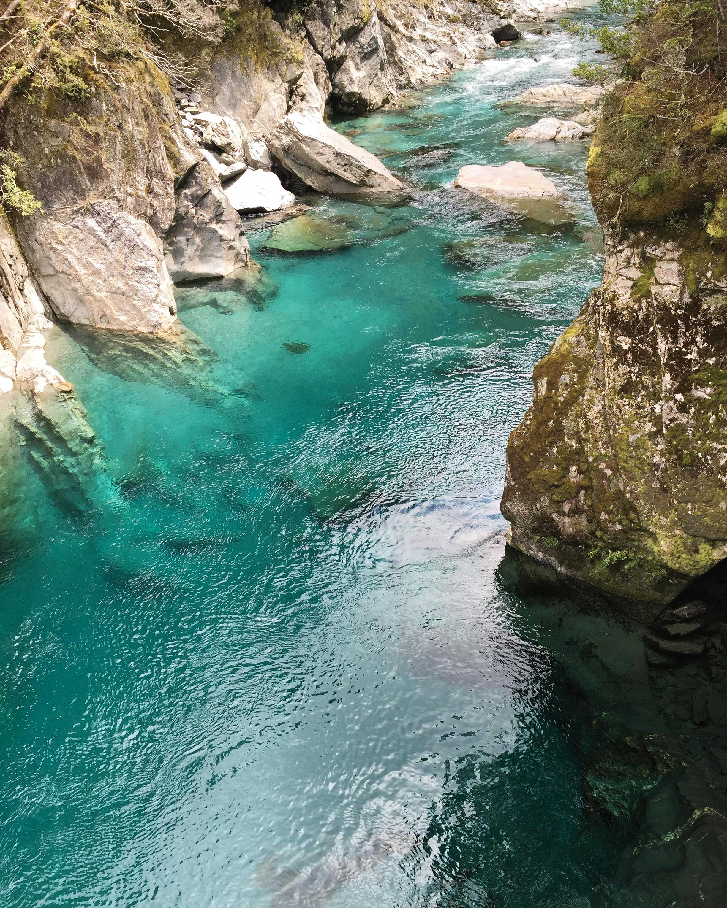 travel-honeymoon-diaries-s112934-new-zealand-hike-young-river-mouth.jpg