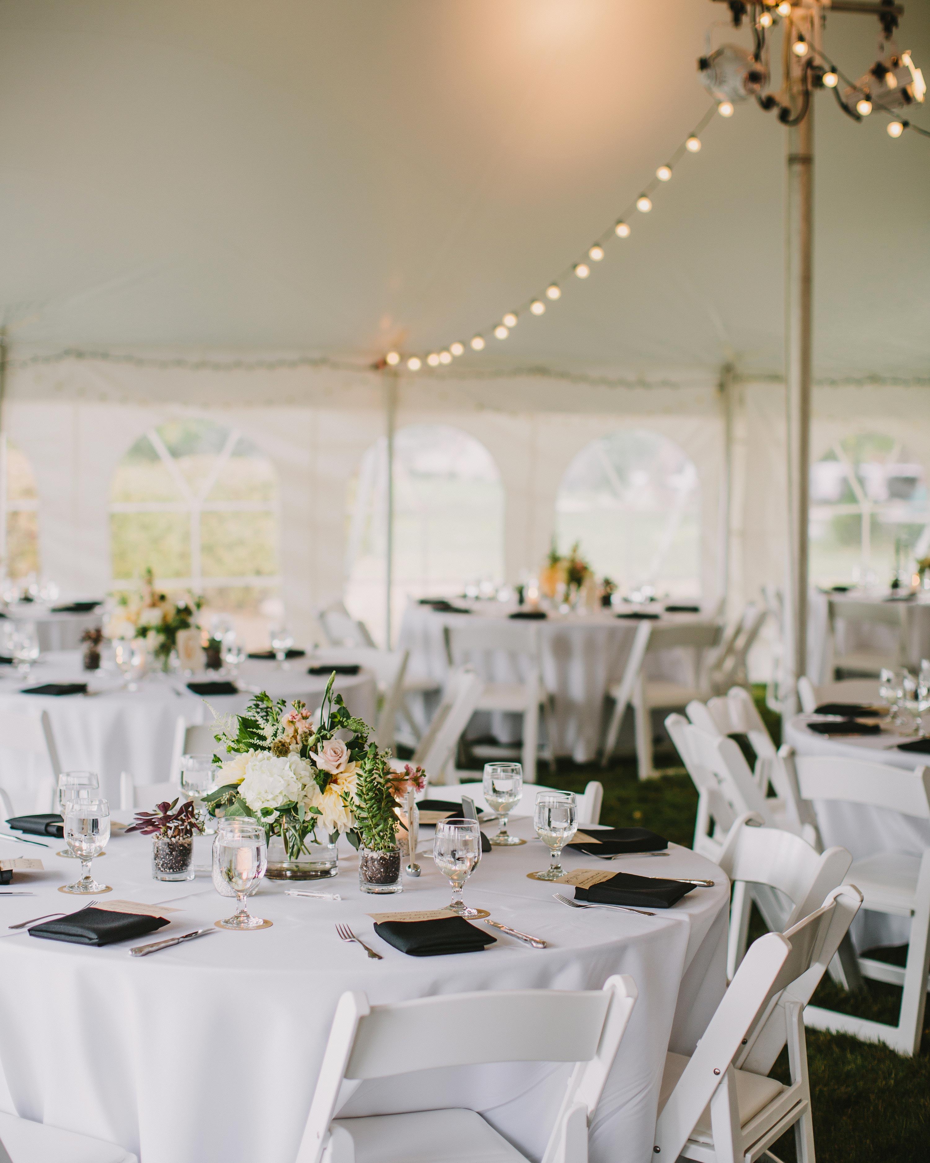 kristen-steve-wedding-tent-007-s113058-0616.jpg