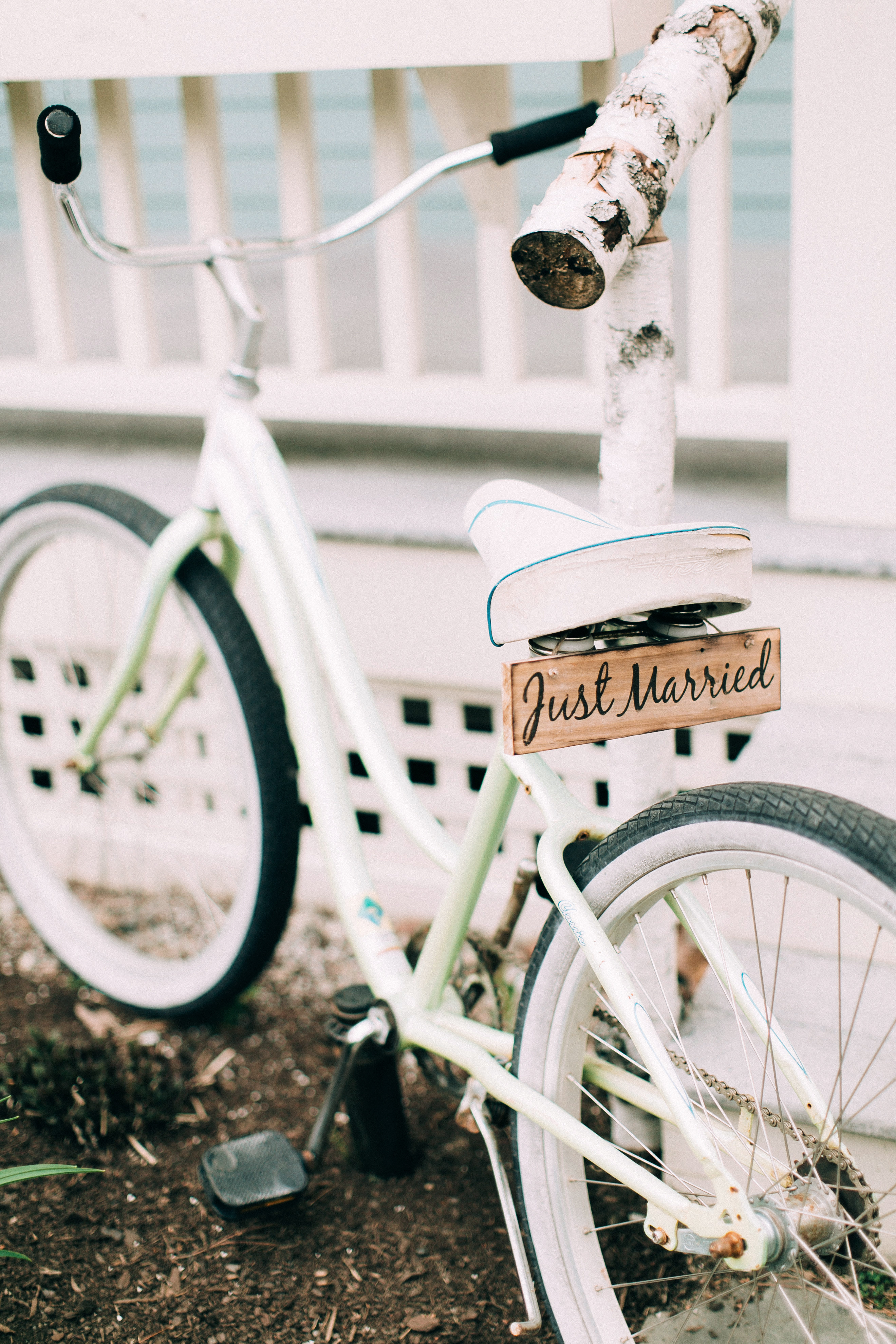just married sign vintage bicycle plate