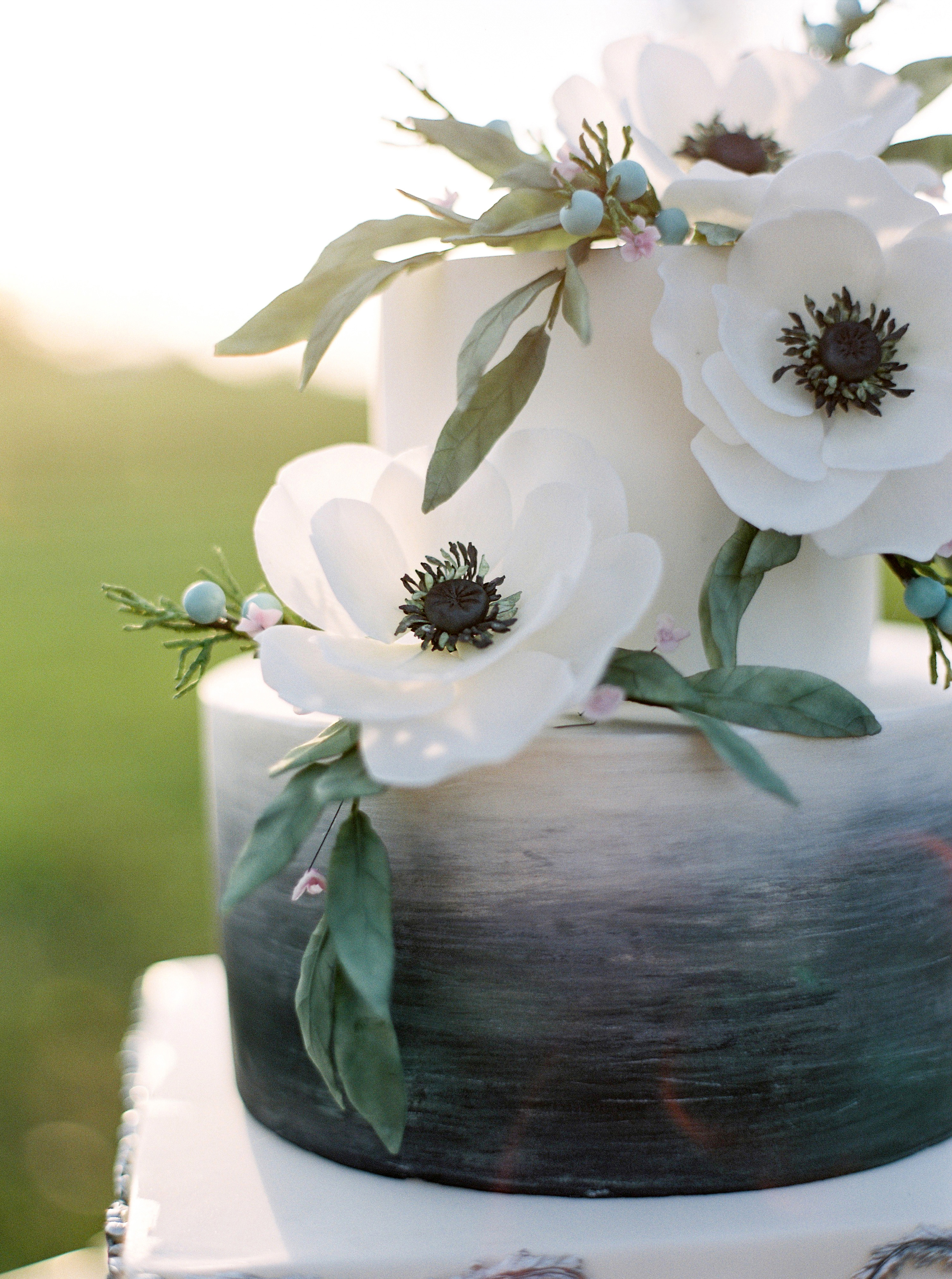 ombre cakes amelia johnson