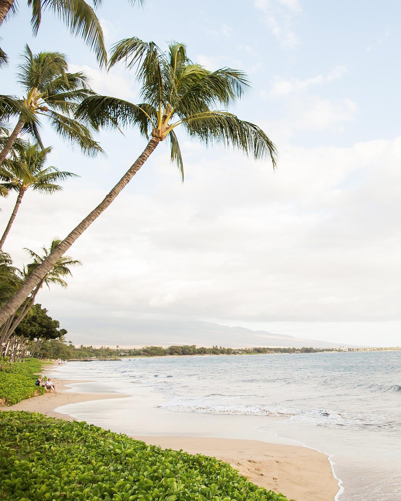 christen-tim-wedding-hawaii-23375-6143924-0816.jpg