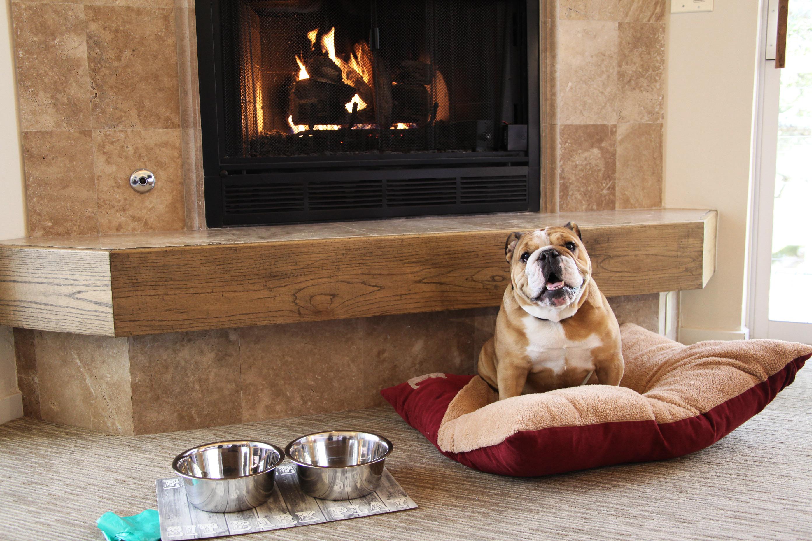 carmel valley ranch pet friendly hotel