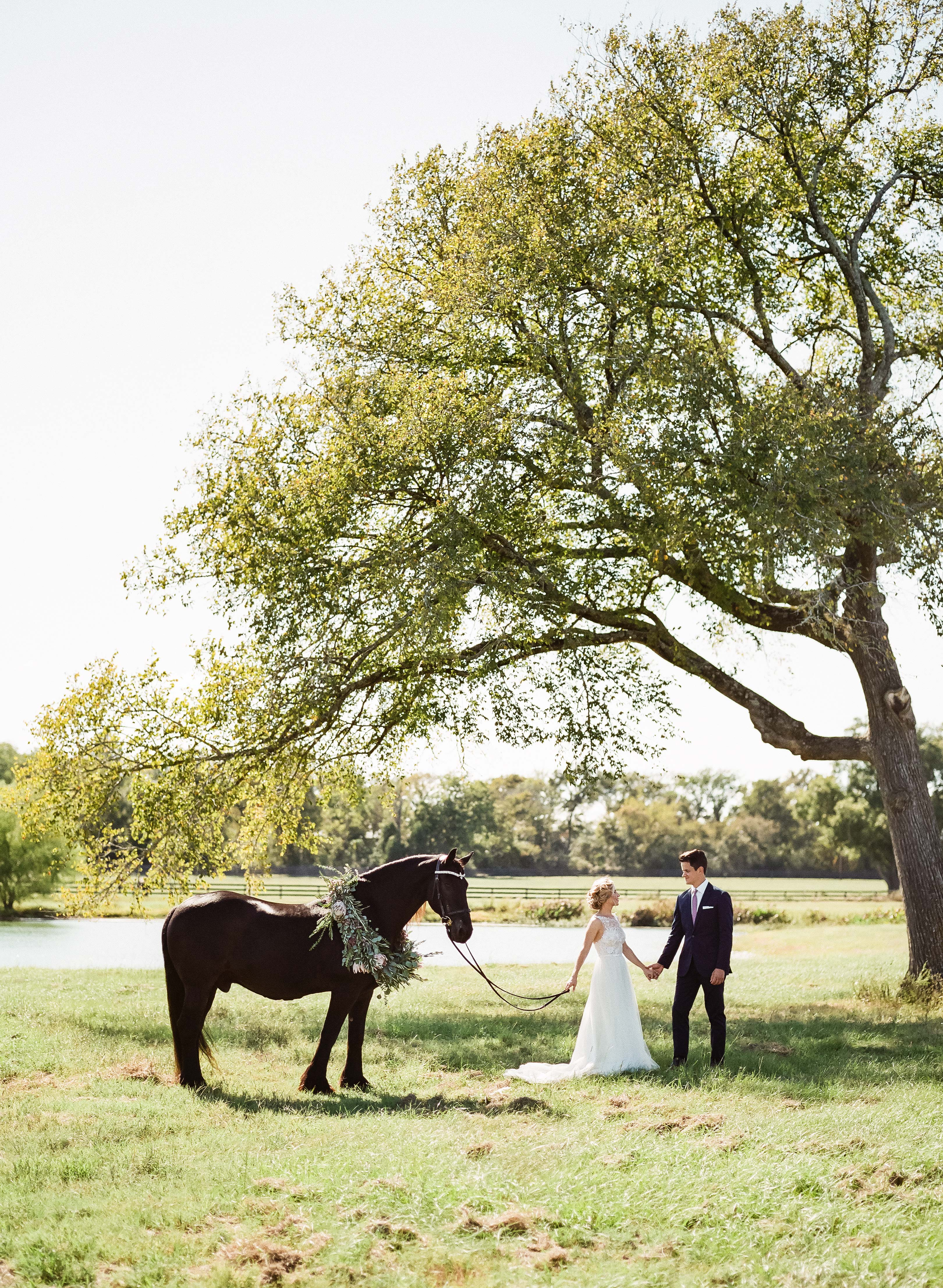 wedding couple with horse