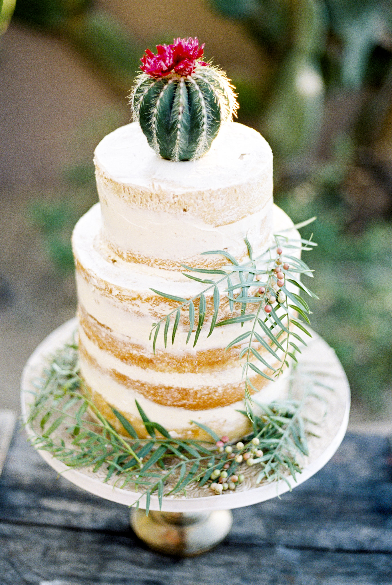 Trending Now Cactus Wedding Ideas Martha Stewart Weddings