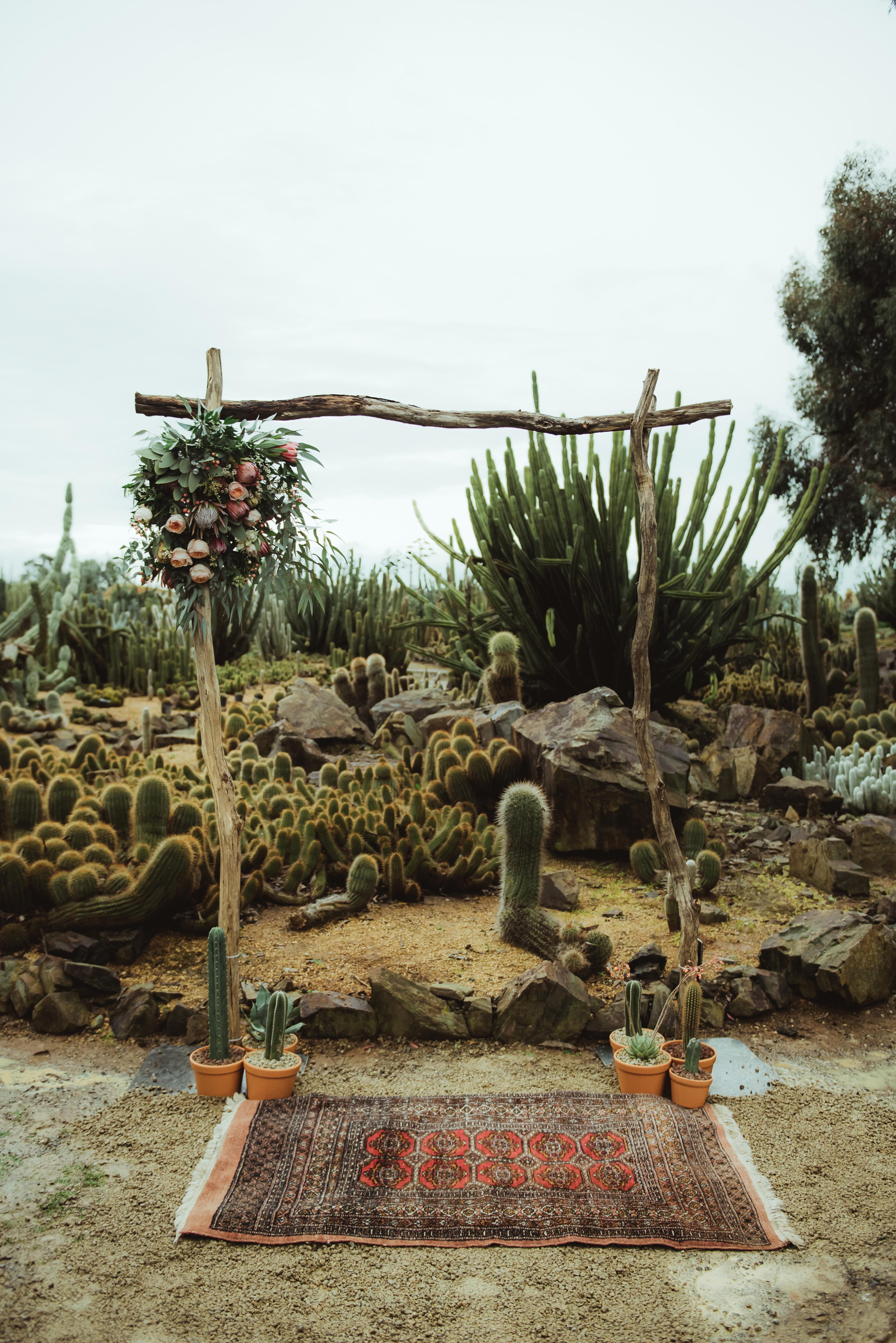 Cactus Ceremony Backdrop